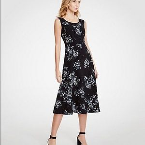 Ann Taylor Floral Piped Midi Dress in Black